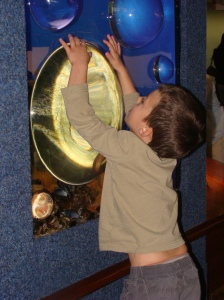 THese big bubbles are always fascinating to Killian. It has a strange magnifier glass effect.
